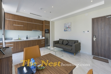 Luxury apartment  for rent in District 3